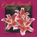 Gentle Sounds Volume 3 CD Image | Carey Landry