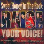Raise Your Voice | CD Image | Sweet Honey in the Rock